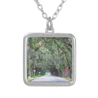 Tranquil Road Silver Plated Necklace