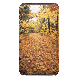 Tranquil Road with Fall Colors in New England iPod Touch Cases