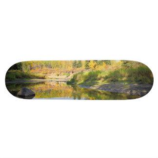 Tranquil Skate Boards