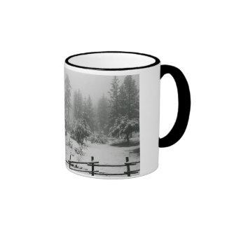 Tranquility Ringer Mug