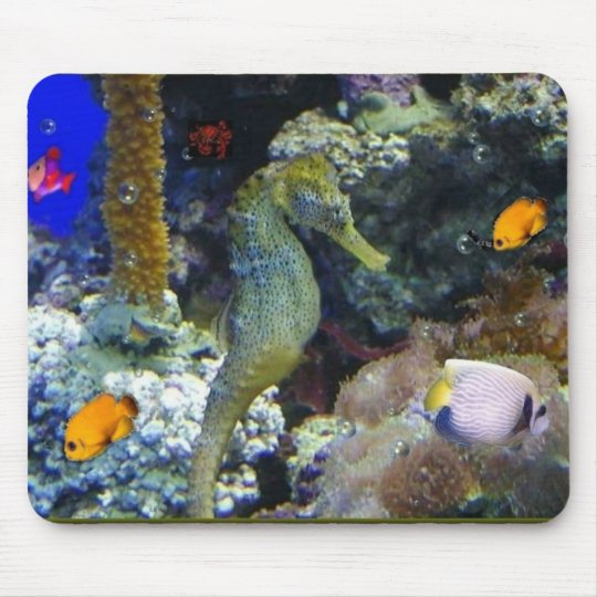Tranquillity Down Under Mousepad