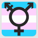 Trans Pride stickers - rounded, with symbol