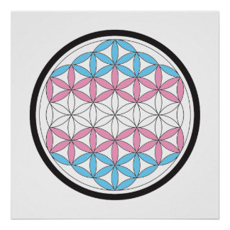 trans sacred geometry poster