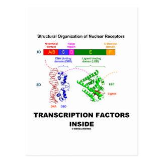 Transcription Factors Inside (Nuclear Receptors) Post Cards