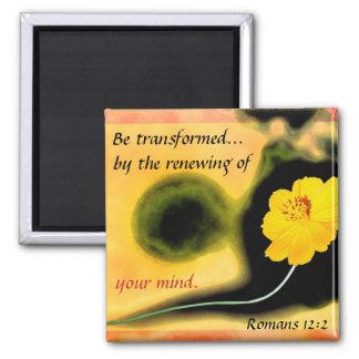 """""""Transformed"""" magnet"""
