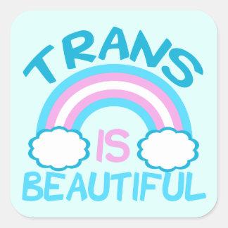 Transgender is Beautiful Square Sticker