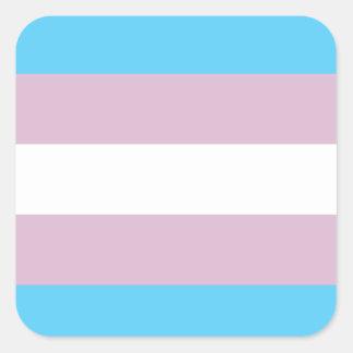 Transgender Pride Flag Sticker Sheet Square