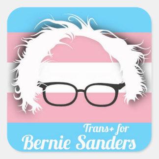 Transgender pride for Bernie Sanders Square Sticker