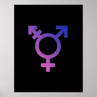 Transgender Symbol Poster