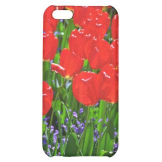 Translucent Red Tulips flowers iPhone 5C Cases