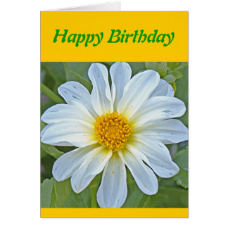 TRANSLUCENT WHITE FLOWER WITH GOLD CENTER GREETING CARDS