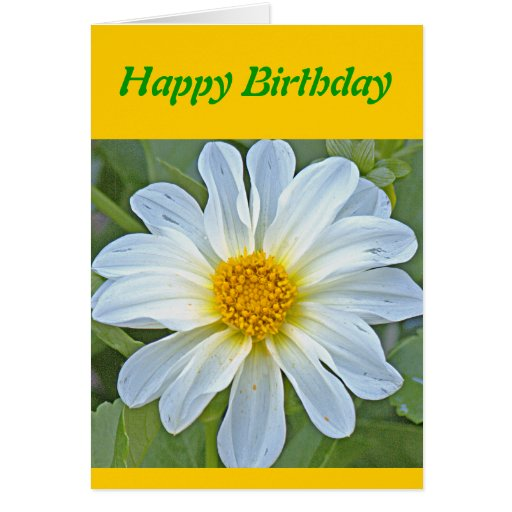 """""""TRANSLUCENT WHITE FLOWER WITH GOLD CENTER"""" GREETING CARDS"""