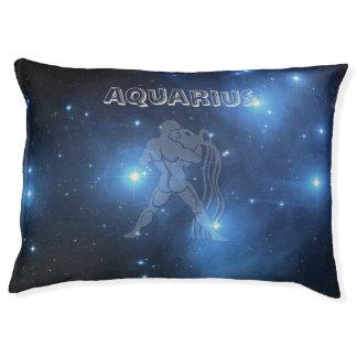 Transparent Aquarius