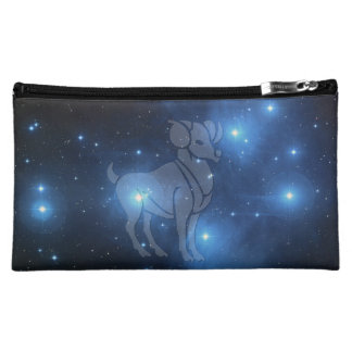 Transparent Aries Cosmetic Bag