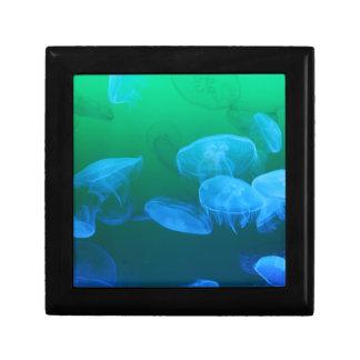 Transparent Jellyfish Gift Box