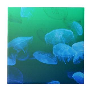 Transparent Jellyfish Tile