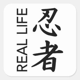 Transparent Real Life Ninja Stickers