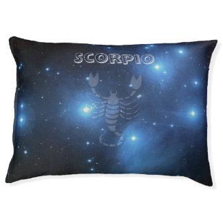 Transparent Scorpio