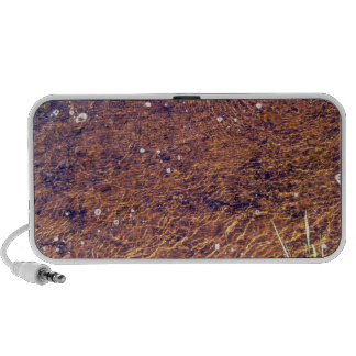 Transparent sea water ripple on the beach texture iPhone speaker