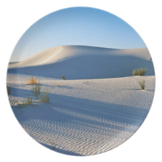 Transverse Dunes, Yucca, Early Morning Light Party Plate
