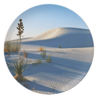 Transverse Dunes, Yucca, Early Morning Light Plate