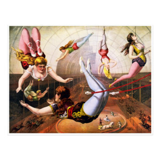 Trapeze Artists Postcard