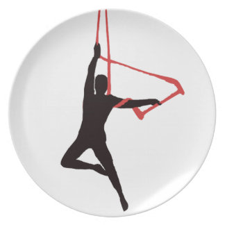 Trapeze Swing Aerialists Plate