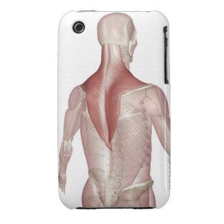 Trapezius iPhone 3 Covers