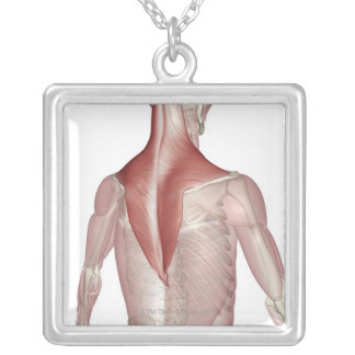 Trapezius Silver Plated Necklace