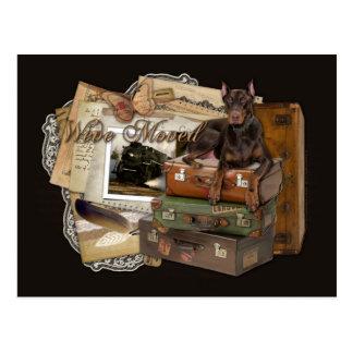 Traveling Doberman - Rocky Postcard