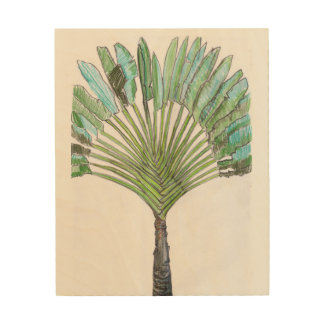 Traveller's palm wall art