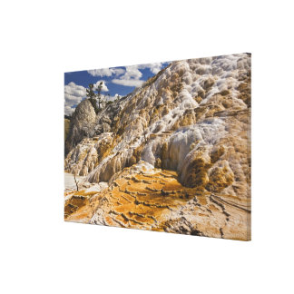 Travertine terraces at Mammoth Hot Springs, Yellow Canvas Print