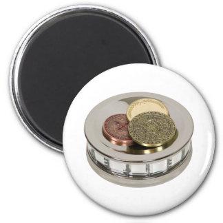 TreasureMirror110409 copy 6 Cm Round Magnet
