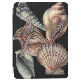 Treasures of the Sea iPad Air Cover