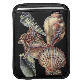 Treasures of the Sea iPad Sleeve
