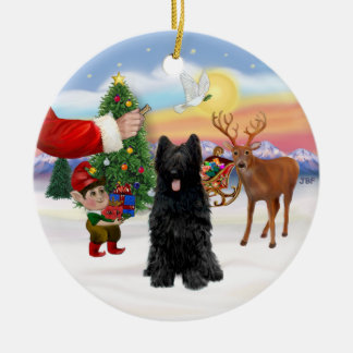 Treat for a Black Briard Christmas Ornament