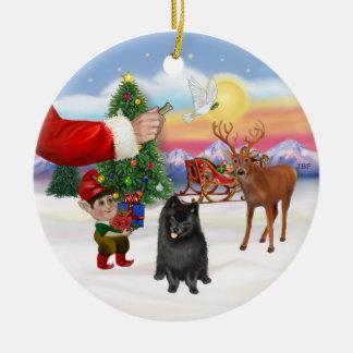 Treat for a Black Pomeranian Christmas Ornament