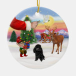 Treat for a Black Poodle (Toy) Ornaments