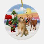 Treat for a Golden Retriever (#5) Ornaments