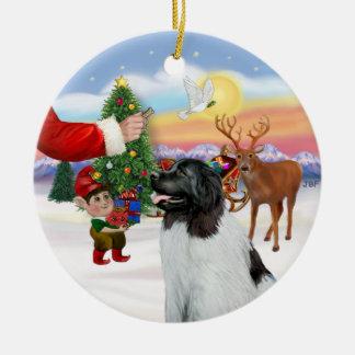 Treat for a Landseer Newfoundland Christmas Ornament
