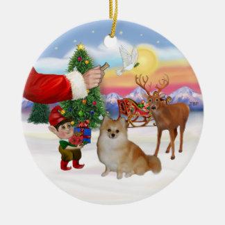 Treat for a Pomeranian Christmas Ornament