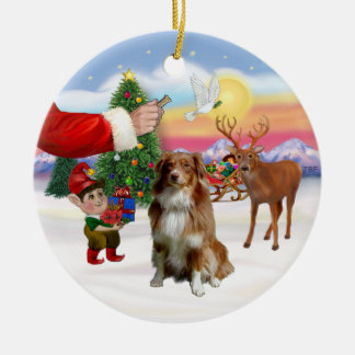 Treat for a Red and White Australian Shepherd Christmas Ornament