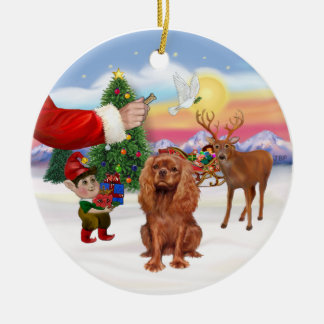 Treat for a Ruby Cavalier King Charles Span Christmas Ornament