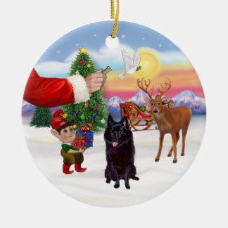 Treat for a Schipperke Round Ceramic Decoration