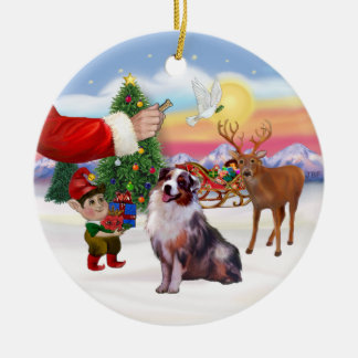 Treat for an Australian Shepherd (merle) Christmas Ornament