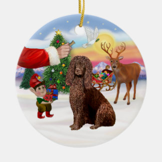 Treat for an Irish Water Spaniel Christmas Ornament