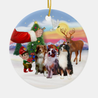 Treat for Three Australian Shepherds Christmas Ornament