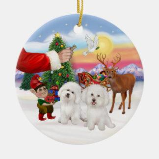 Treat forTwo Bichon Frise Christmas Ornament