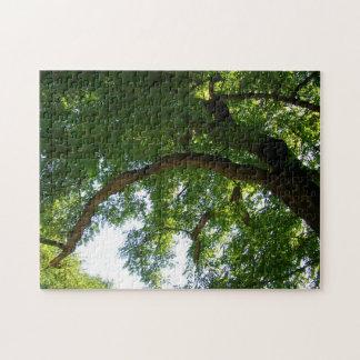 Tree 28 cm x 35.6 cm photo puzzles with gift box