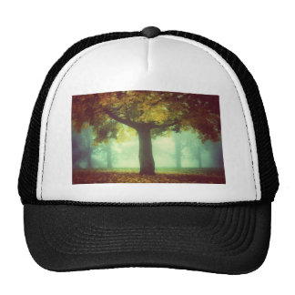 Tree #2 cap